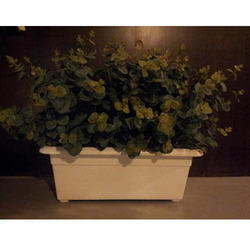 Green Eucalyptus Planter