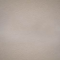 Spectra Stucco Art Texture Paint at Rs 300 piece Texture Paints