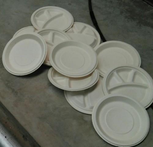 Eco Friendly Sugarcane Pulp Plate & Eco Friendly Sugarcane Pulp Plate at Rs 4 /plate - Jyoti Industries ...