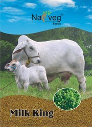 Lion brand Barseem Seed, For Grass Seed For Agree Use, Pack Size: 1kg