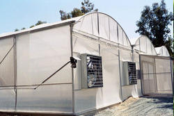 Greenhouse With Fan Pad Cooling System