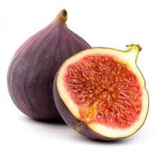 Ficus Carica ( Fig / Anjeer ) Extract