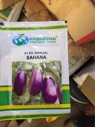 Bringal Seeds