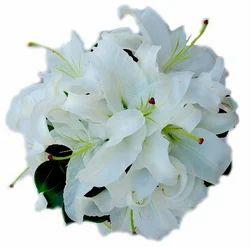 Oriental Lily Flower Bouquet