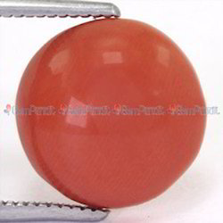 3.96 Carat Japanese Red Coral