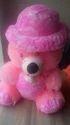 Bachha Teddy Bear