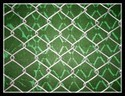 Galvanized Chain Link Fencing