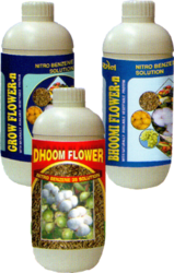Bhoomi Flower N Dhoom Flower Grow Flower