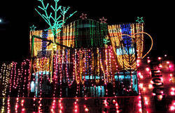 Decorative Lighting Service