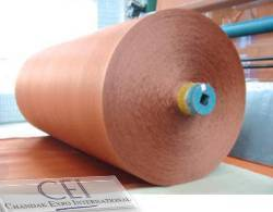 Belting Fabric