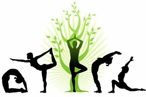 Male Yoga Classes, International Yoga Research Charitable Trust | ID:  13596775491