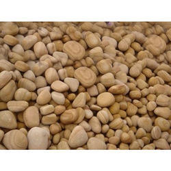 Teakwood Unpolished Pebbles