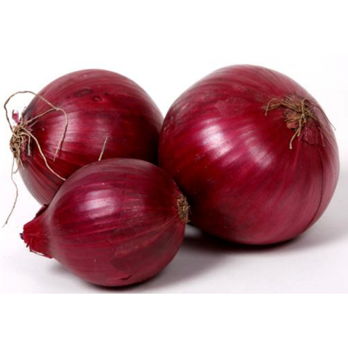 красный салатный лук фото