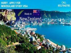 New Zealand Study Visa