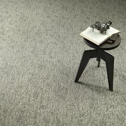Ecliptic Point Modular Carpet