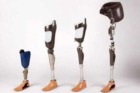Bionic Limb