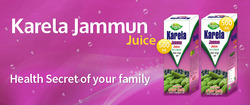 Karela Juice, Packaging Type: Bottles, Packaging Size: 500ml