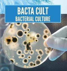 Bacteria To Reduce Commissioning Time