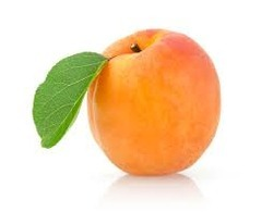 Apricot Testing