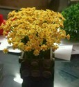 Hyperboles Artificial Plant With Yellow Flower Buds