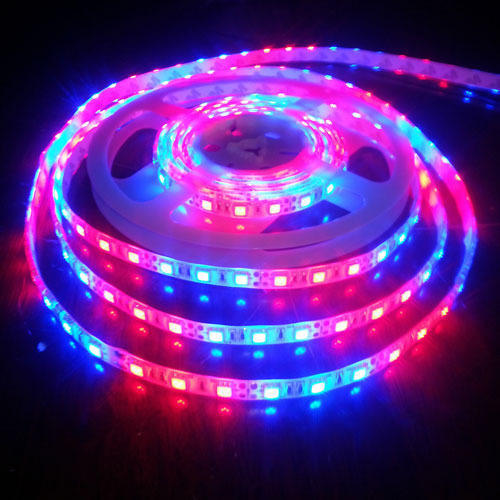LED Strip Light at Rs 210/piece | LED strap, Led Ribbon Light, Led ...