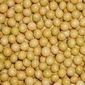 NON-GMO Soybean