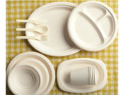 Thermocol Plates And Cups