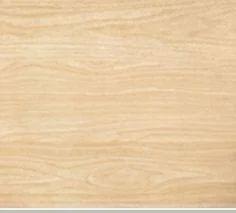 Centuryply Elasto Sainik Plywood