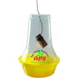 Budgetary Fruit Fly Trap