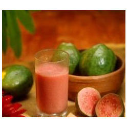 Guava Pulp in Chittoor - Latest Price & Mandi Rates from Dealers in