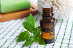 Peppermint Oil (IP Grade)