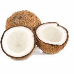 Pollachi Matured Coconut