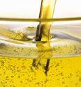 Quality Rich Moringa Oil