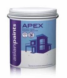 Asian paints apex stretch xxx pictures