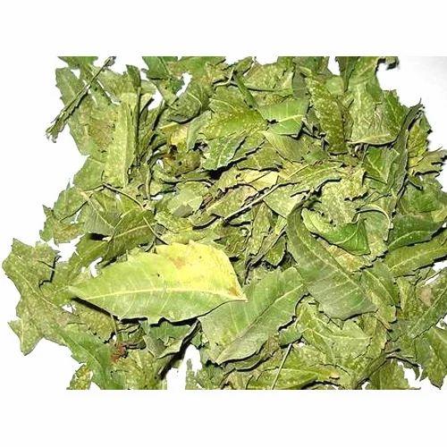 Shade Dried Neem Leaves