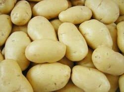 Golden Potatoes