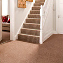 Loop Pile Carpet On Srs