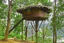 Tree House Construction Rajasthan