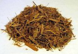 Catuaba Extract, Pack Size: 5 Kg