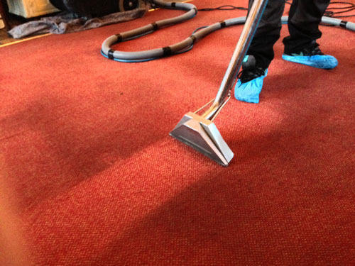 Carpet Treatment Services