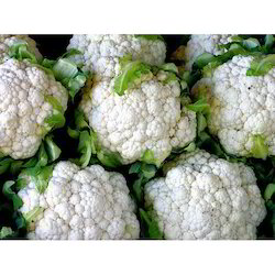 A Grade Fresh Cauliflower, Packaging: Plastic Bag Or Polythene Bag