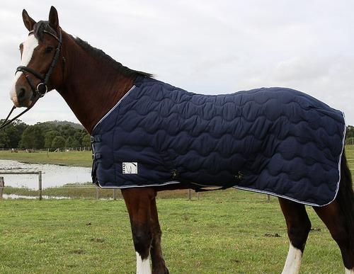 Horse Rugs Polar Fleece Le
