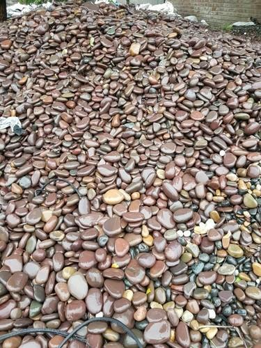 Pebbles Narmada River Pebbles Wholesale Supplier From