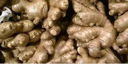 Ginger, Packaging Size: 50 Kg