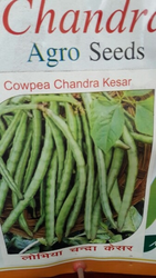 Agriculture Seeds