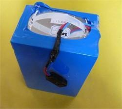 E Bike Dry Charged Battery, Capacity: 24 Ah, Nominal Voltage: 12 V