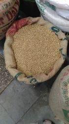Locwan Wheat
