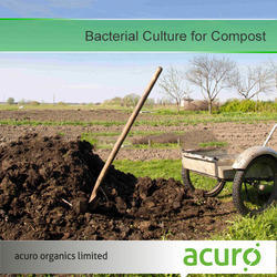 Bacterial Culture for Compost
