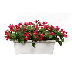 Dark Pinl / Red And Off White Artificial Bougainvillea Flower