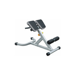 45 Degree Hyperextension